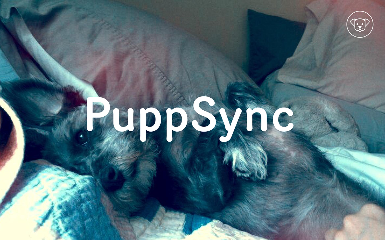 KarenMessing-PuppSync-3