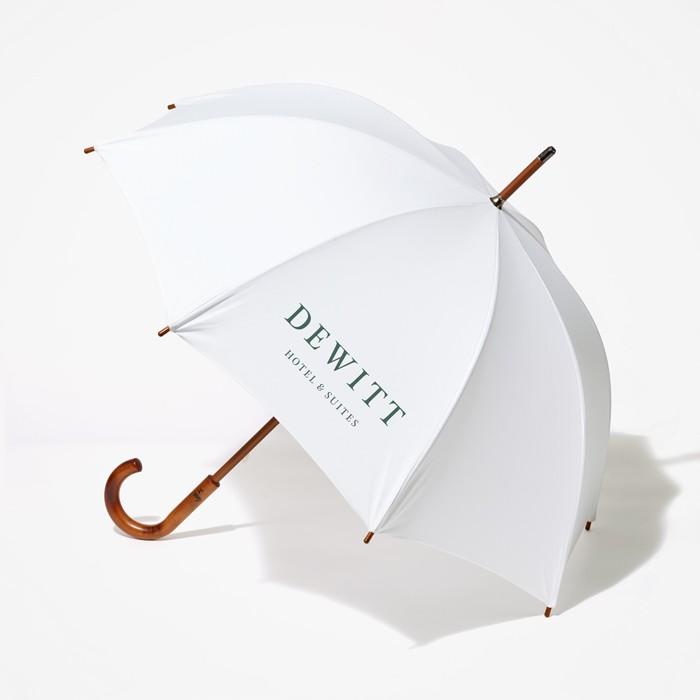 KarenMessing-DeWitt-Umbrella